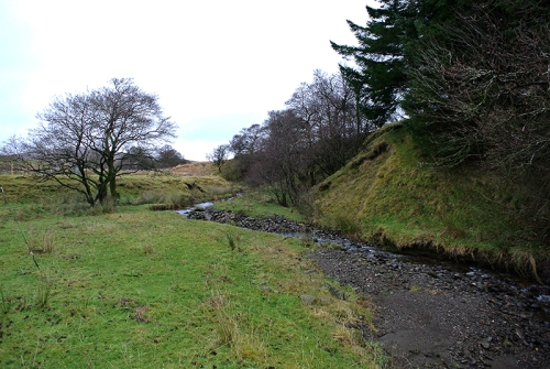 Glencorf