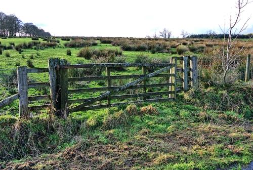 gate at Hallcrofts