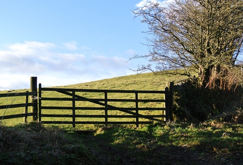 gate on Castle Hill