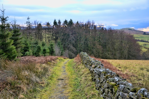 Seven Stanes