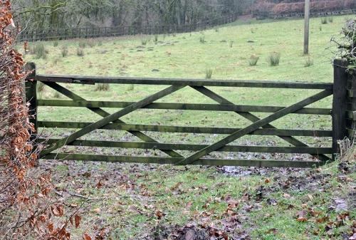 gate with diamond