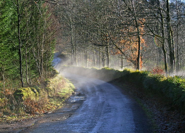 mist on Claygate road