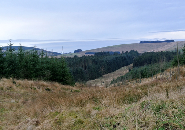 View from Kirtleton Forest