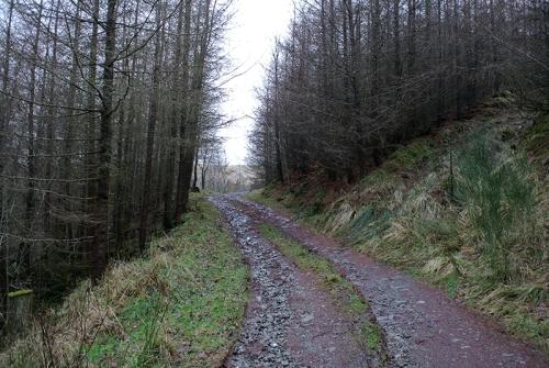Whitshiels track