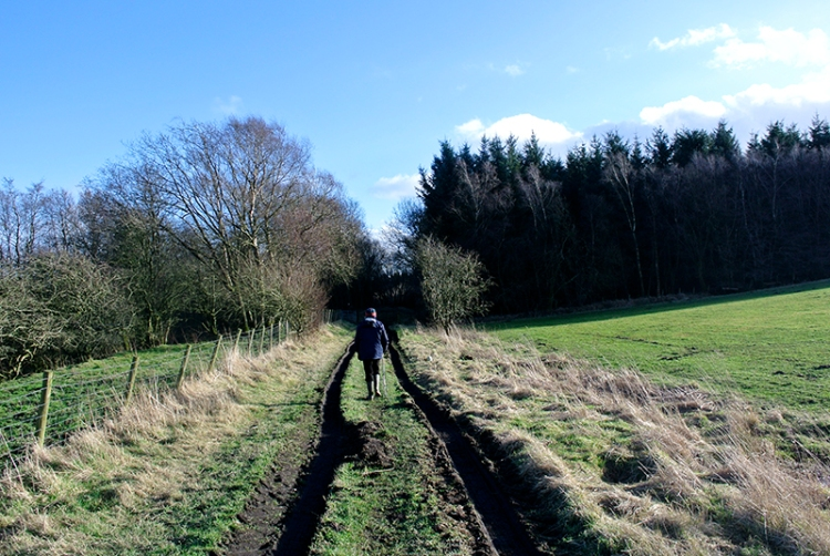 railway track at Rowanburn