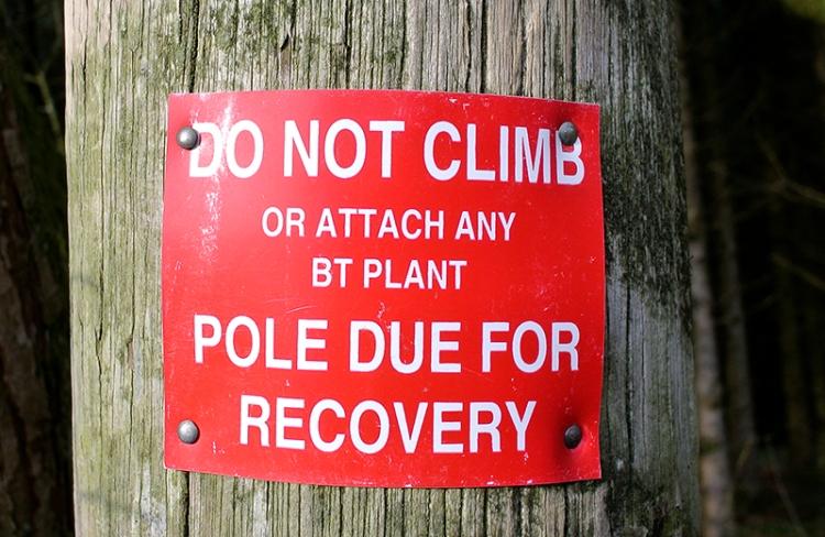 sick pole