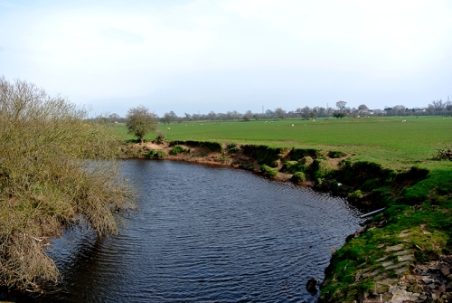 View river Lyne