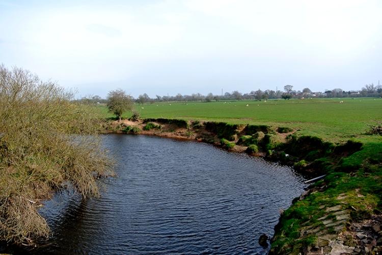 View river Lyne