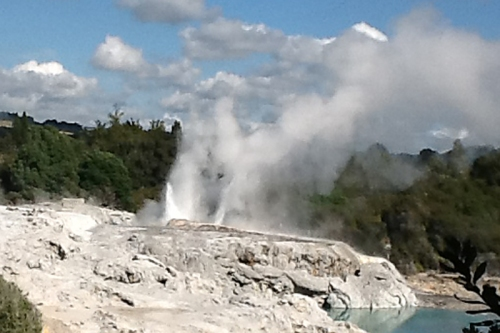 geyser NZ