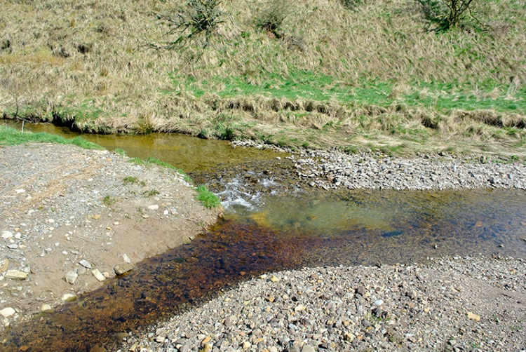 stream at Westwater