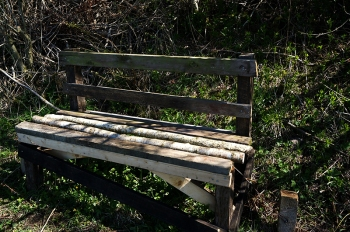Liddle bench