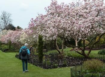 Caroline at Hilliers Arboretum_2