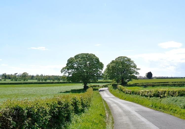 Cumbrian lane