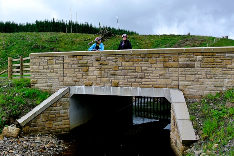 Collin bridge