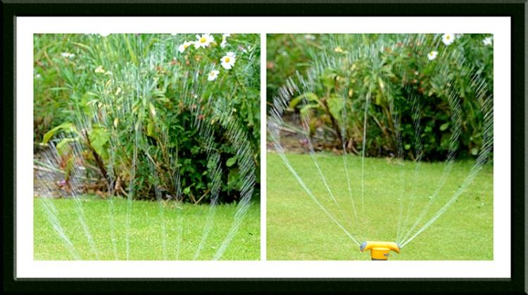 swirly water sprinkler