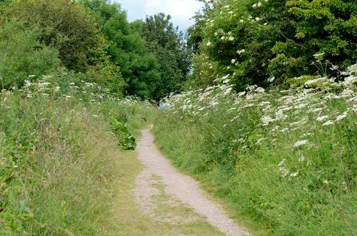 Longtown path