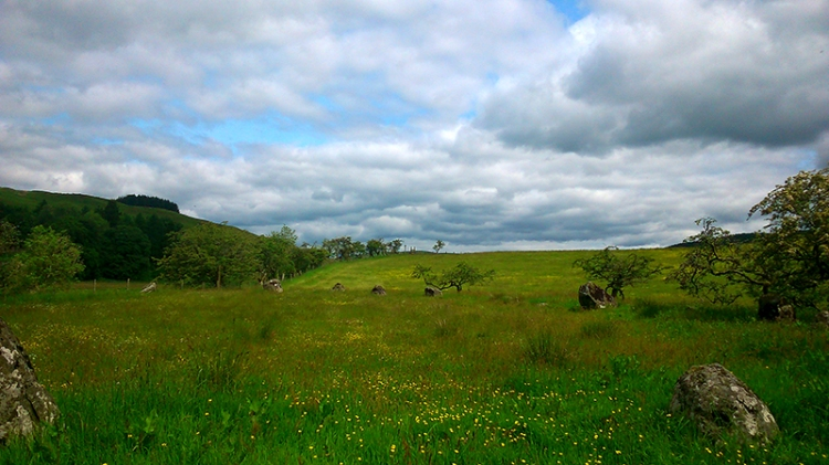 girdle stanes