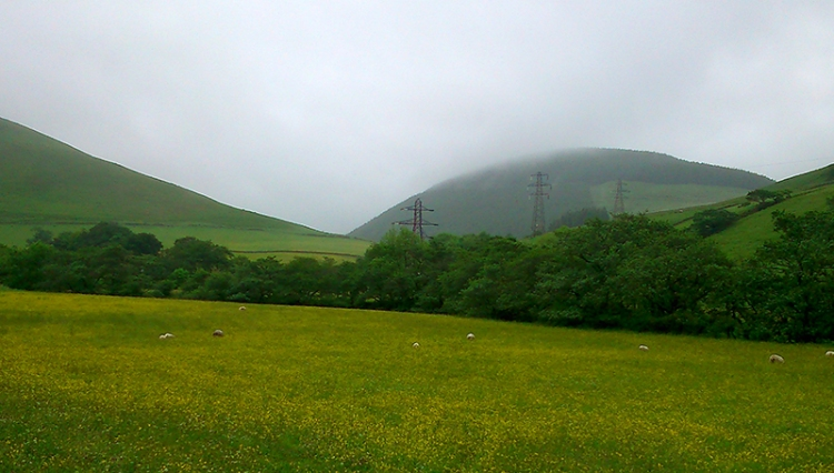 ewses valley