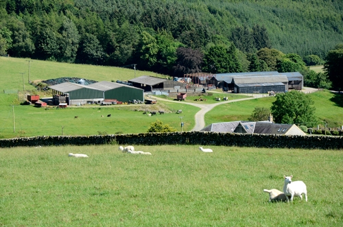 Potholm farm buildings