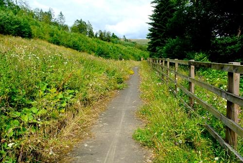 A7 bike path