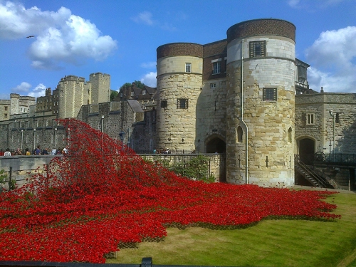 Cascade of poppies at the Tower of London