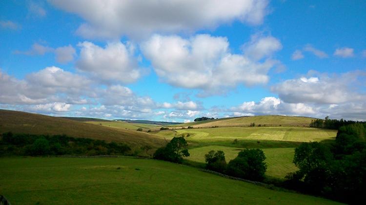 View near paddockhole