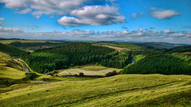 bailliehill view (2)