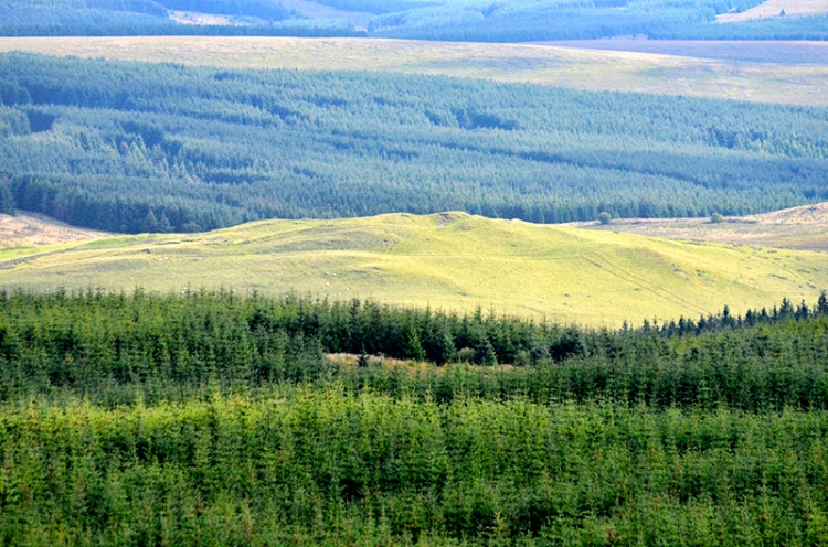 Castle O'er view of Bailliehill