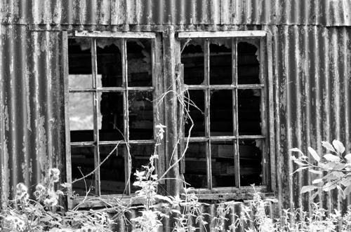 new lens black and white