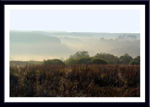 Tarras Valley