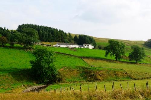 Craighousteads Farm