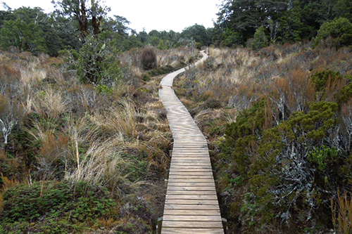Ruapehu Round the Mountain partial tramp Sept 2014 - 11