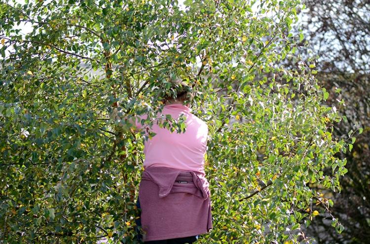 Liz in a tree