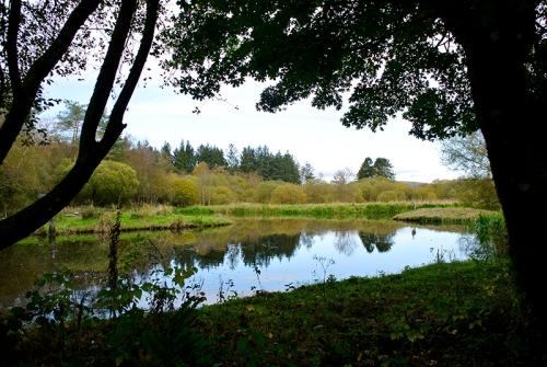Eskrigg nature reserve
