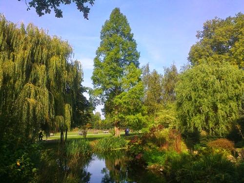 Regent's Park  27.09.14 007