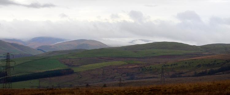 Ewes in cloud