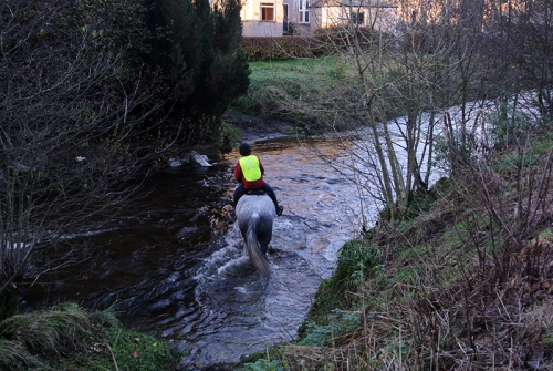 Horse crossing ford