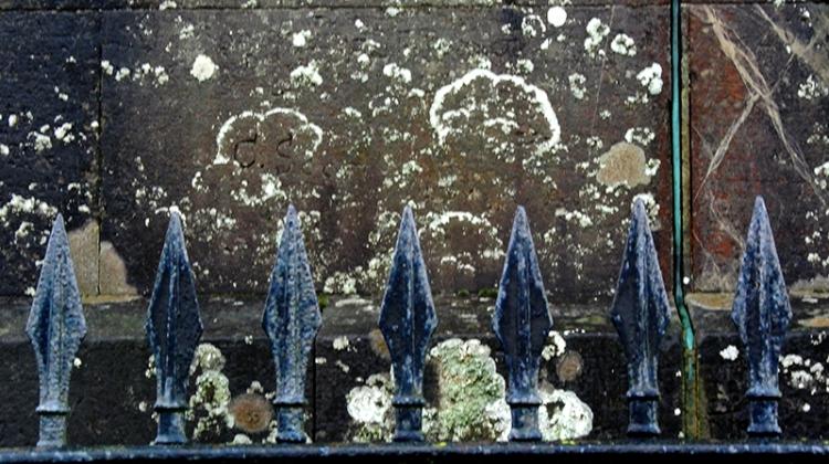 Monument lichen