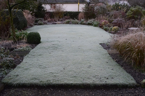 A chilly middle lawn