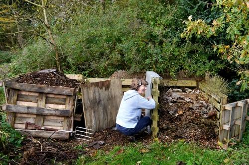 Sue's compost