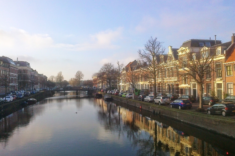 Evening light, Haarlem