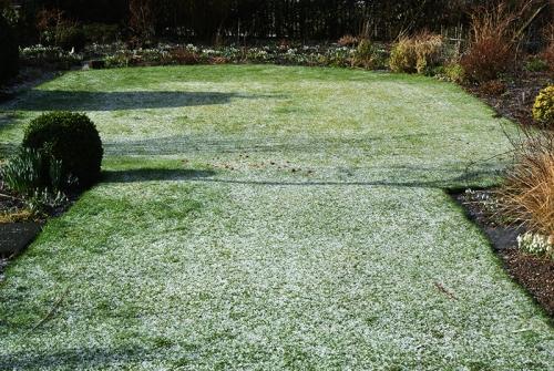 hail on lawn