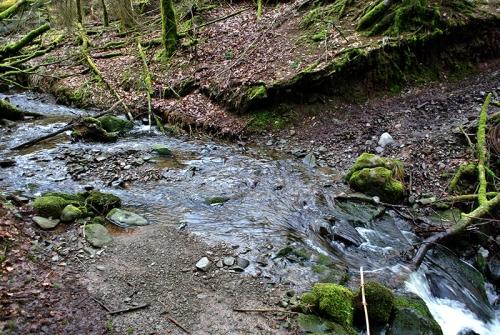 stream at Hillhead