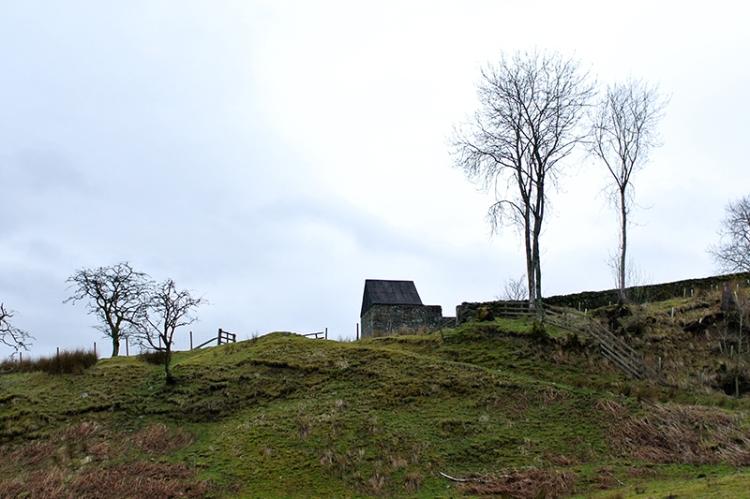 Terrona field