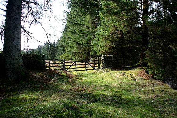 wauchope gate