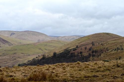 castle hill ridge