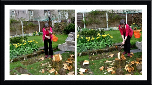 Mrs Tootlepedal splitting logs