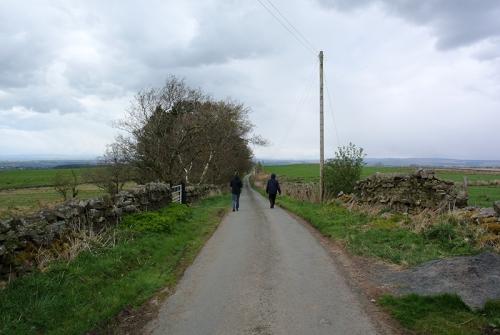 Sue's walk