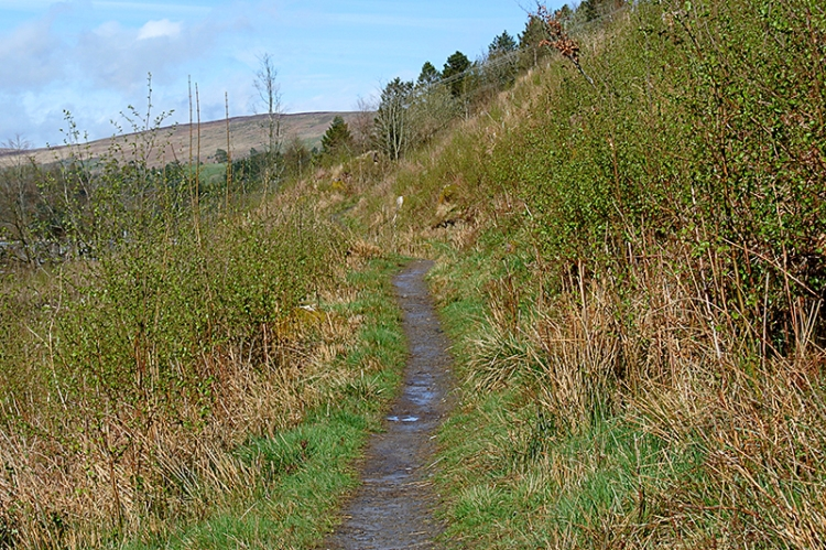 Gaskell's Walk