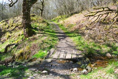 round house path